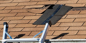 Roof Repair Services in Denver